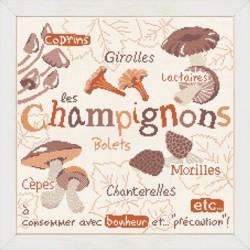 Les champignons - Lilipoints