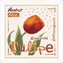 Coquelicot - Lilipoints