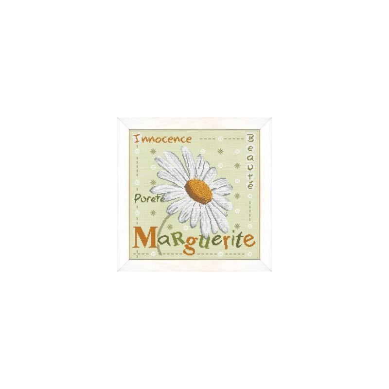 La marguerite - Lilipoints