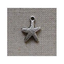 Charm étoile de mer