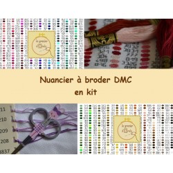 Kit pour nuancier DMC à broder - nuancier complet