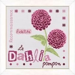 Le dahlia - Lilipoints