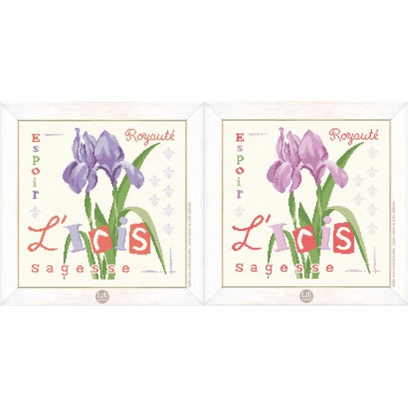 L'iris - Lilipoints