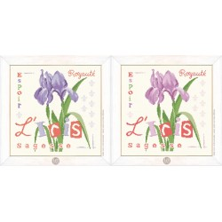 L'iris - Lilipoints - pack complet