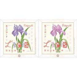 L'iris - Lilipoints - semi-kit diagramme+toile