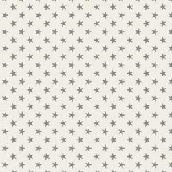 Tiny Star Grey - au mètre - laize 110cm - tissu Tilda