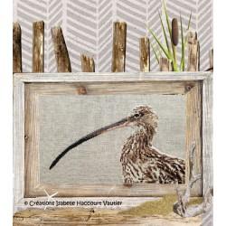 Le courlis cendré - Isabelle Haccourt Vautier
