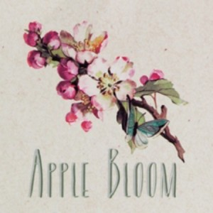 Collection Apple Bloom